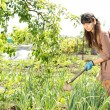 Woman hoeing her vegetable garden - Stock Photo