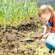 Little boy working in the garden — Stock Photo #25364863