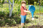 A cute kid watering a plant with watering can — Stock Photo