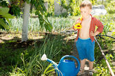 Little boy helping with the gardening — Stock Photo