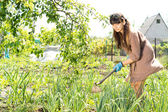 Woman hoeing her vegetable garden — Stockfoto