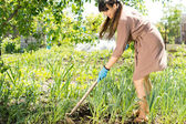 Woman weeding with a hoe — Stock Photo