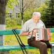Handicapped man playing the accordion — Stock Photo