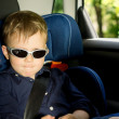 Young boy sitting in a child car-seat — Stock Photo #26144621