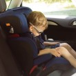 Young small boy sleeping in a child car-seat — Stock Photo #26144597