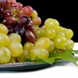 Red and green grapes on a platter — Stock Photo