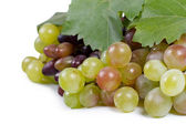 Sweet fresh grapes for eating or winemaking — Stock Photo