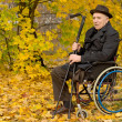 Disabled senior man in a wheelchair — Stock Photo