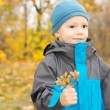 Cute happy little boy in autumn woods — Stock Photo