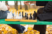 Planning and strategy in a game of chess — Stock Photo