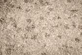 Background texture of polished stone — Stock Photo