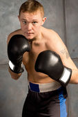 Professional young boxer in a fight — Stock Photo