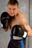 Determined professional boxer in training — Stock Photo