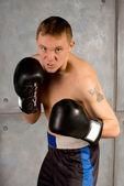 Professional boxer watching carefully — Stock Photo