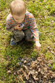 Little boy setting alight to twigs and leaves — Stock Photo