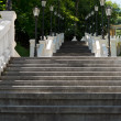 Long steep staircase in a wooded park — Stock Photo #49168707