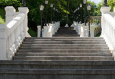 Long steep staircase in a wooded park — Stock Photo
