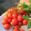 Stock Photo: Tomatoes cherry on plate