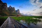 Puente de madera en el lago de lotos en parque nacional khao samroiyod, tha — Foto de Stock