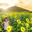 Closeup smiling girl in the sunflowers field — Stock Photo #25966499