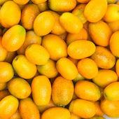 Ripe orange kumquat — Stock Photo