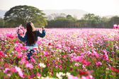 Little asian girl standing in flower fields — Stock Photo