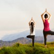 Mother and daughter doing yoga — Stock Photo #46001745