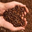 Heart of cofee grains in hollow the hand — Stock Photo