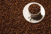 Cup with coffee beans on a dark background — Stock Photo