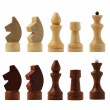 Chess figure isolated on the white background — Stock Photo