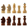 Chess figure isolated on the white background — Stock Photo #31816747