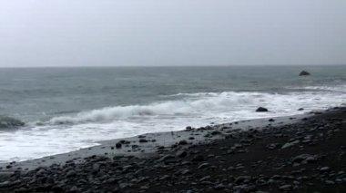 Raining at the black beach — Stock Video