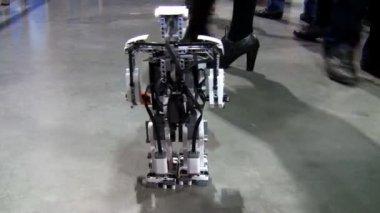 Little robot walking — Stock Video