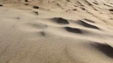 Sand, desert, wind — Video Stock