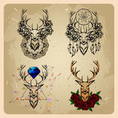 Set Deer with flowers and dream catcher — Stock Vector