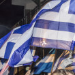 Greek flags on political gathering — Stock Photo #22953896