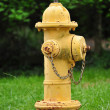 Fire Hydrant — Stock Photo