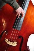 Upright Bass — Stock Photo
