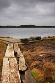 Timber road, bench and lake in marsh — Stock Photo