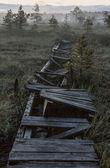 Broken road in a marsh in dark night — Stock Photo