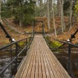 Chain bridge over river in forest — Stock Photo #13527856