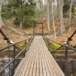 Chain bridge over river in forest — Stock Photo #13527949