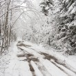Stock Photo: Muddy road in white forest covered with fresh snow.