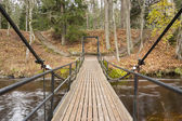 Chain bridge over river in forest — Stock fotografie