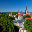 Large city panorama of Tallinn, Estonia — Stock Photo