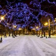 Stock Photo: Snowy avenue and christmas lights
