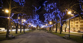 Avenue with blue Christmas lights on trees — Stock Photo