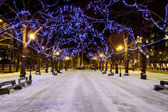 Snowy avenue and christmas lights — Stock Photo
