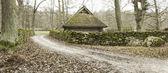 Way to farmhouse — Stok fotoğraf