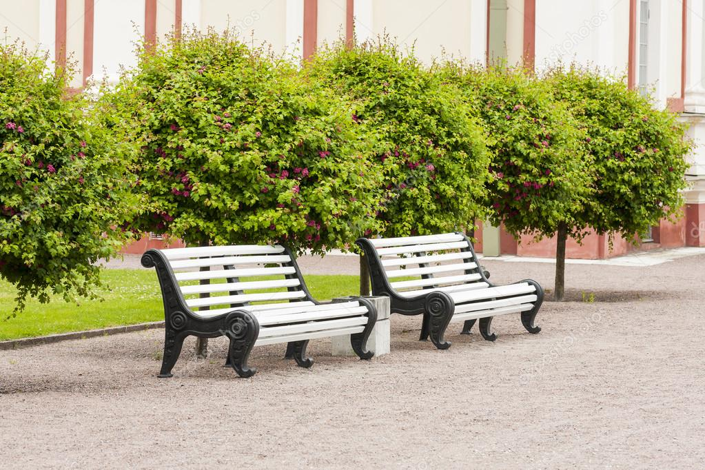 White garden benches under small green trees in a park — Stock Photo #15521819